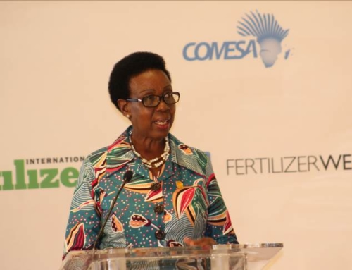 ESAFA Conference Highlights: Africa needs to urgently raise fertilizer use to boost food security